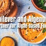 Unilever and Algenuity partner for algae-based foods