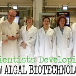 Russian, German scientists developing new algal biotechnology